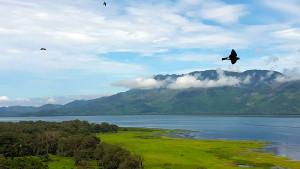 Birds Flying Over Lake Yojoa Against Sky