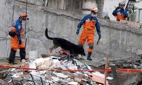 aa japon mexico terremoto