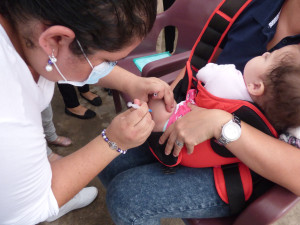 Vacunas Influenza2