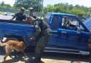 FUSINA incrementa medidas de seguridad en feriado agostino