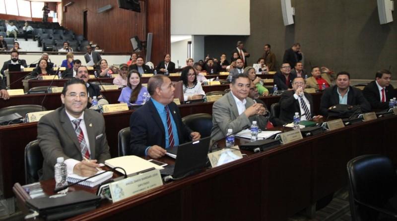 CN aprueba  prohibición de adopción a matrimonios del mismo sexo
