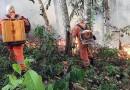Arde la Amazonia y es deber de todos evitar ese tipo de catástrofes