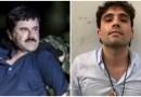 Molesto pueblo mexicano, por  liberación de hijo del 'Chapo'