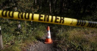 Condenan a seis meses de cárcel a un hombre por intentar buscar tesoro en parque de EE.UU.